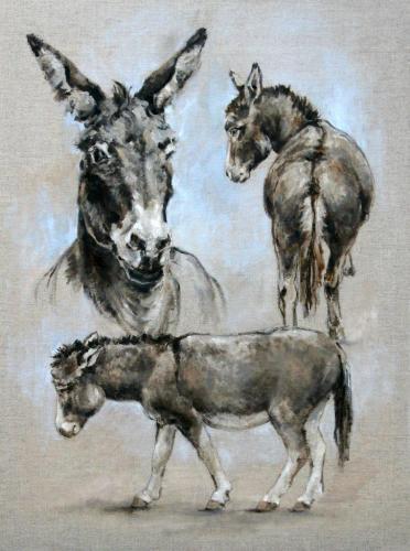 Esel (Studie auf Leinen - Ölfarbe), HOPP´s MAL Kunstschule