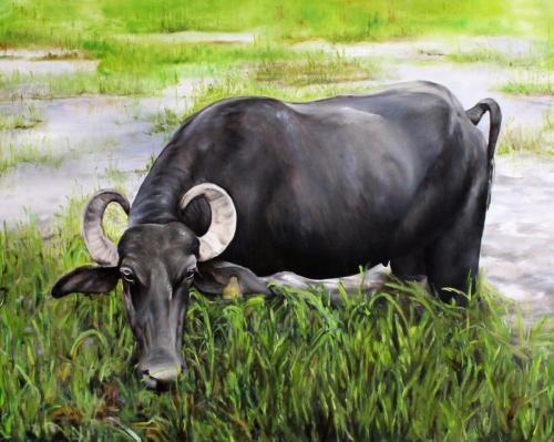 Kolumbianisches Rind (Öl auf Leinwand), HOPP´s MAL Kunstschule